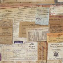 Neutral Documentation fabric