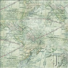 Expedition Map Fabric